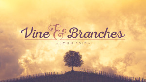 VineandBranches-Theme